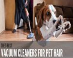 picture of a dog being chased by a vacuum cleaner